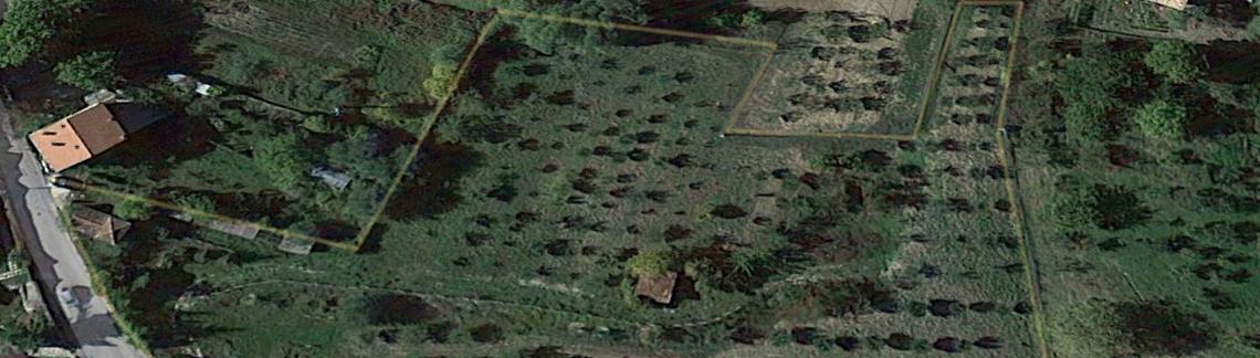 CARRITO-GOOGLE-MAP-TERRENO-evidenziato-in-giallo